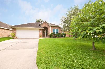 Porter Single Family Home For Sale: 21320 Terreton Springs Drive