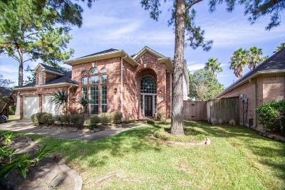 Houston Single Family Home For Sale: 12110 Laguna Pointe Lane
