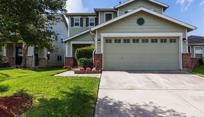 Houston Single Family Home For Sale: 2710 Skyview Knoll Court