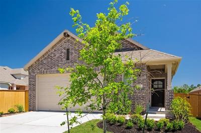 Montgomery Single Family Home For Sale: 176 Emory Birch