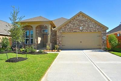 Single Family Home For Sale: 7327 Driftstone Peak Lane