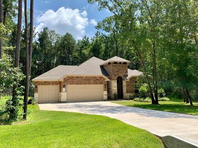 Conroe Single Family Home For Sale: 11041 Shadow View Drive