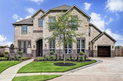 Friendswood Single Family Home For Sale: 1104 Twilight Springs Court