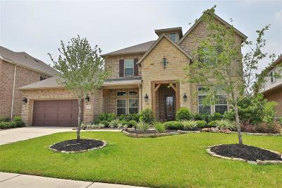 Tomball Single Family Home For Sale: 18719 Tamer View Court
