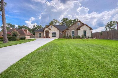 Conroe Single Family Home For Sale: 2612 Sand Shore Drive