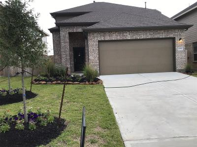 New Caney Single Family Home For Sale: 23767 Via Maria Drive