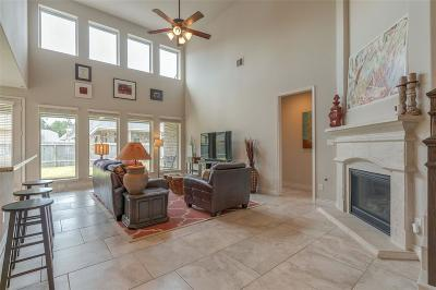 Montgomery Single Family Home For Sale: 146 Verismo Court