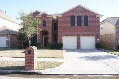Single Family Home For Sale: 222 Chestnut