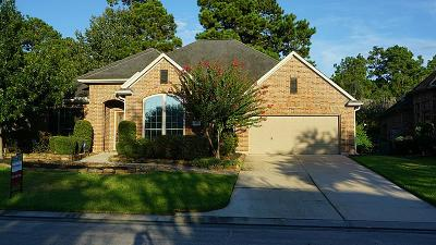 Houston Single Family Home For Sale: 1718 Arbor Forest Trl