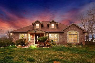 Manvel Single Family Home For Sale: 7647 Dalmolin Road N