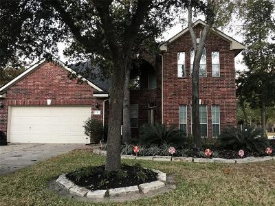 The Woodlands Single Family Home For Sale: 2 Hollow Glen Place