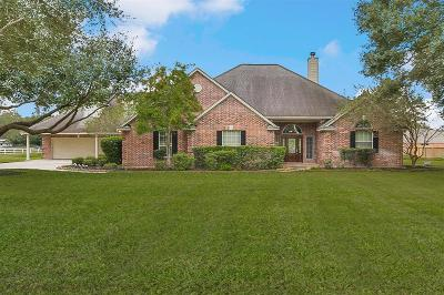 Tomball Single Family Home For Sale: 25315 Hufsmith Cemetery Road