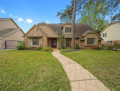 Houston Single Family Home For Sale: 13619 Alchester Lane