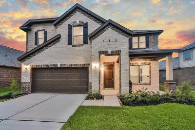 Houston Single Family Home For Sale: 15415 Rosehill Summit Lane