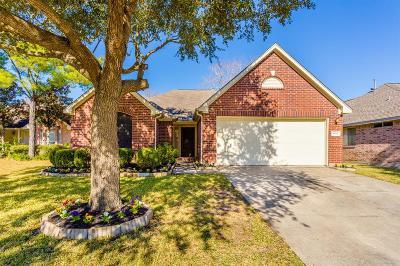 Houston Single Family Home For Sale: 9915 Elm Meadow Trail
