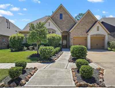 Missouri City Single Family Home For Sale: 54 Genova Way Lane