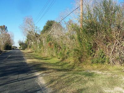 Houston Residential Lots & Land For Sale: 815 Barker Clodine Road