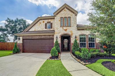 Spring Single Family Home For Sale: 22202 Weller Oaks Drive