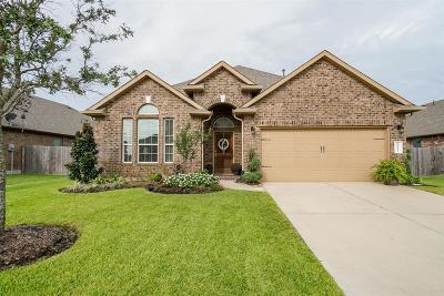 Katy Single Family Home For Sale: 23226 23226 Verona View Lane Lane