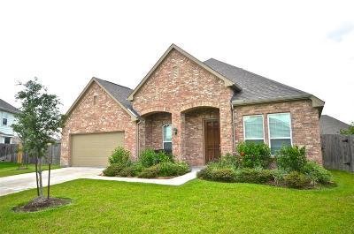 Rosenberg Single Family Home For Sale: 2015 Liberty Cove Court