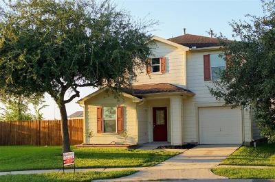 Houston Single Family Home For Sale: 2603 Skyview Shadows Court