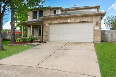Cypress Single Family Home For Sale: 14603 Mills Park Lane
