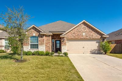 Conroe Single Family Home For Sale: 7635 Daisy Port Lane
