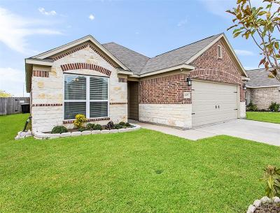 Katy Single Family Home For Sale: 3207 Thicket Path Way