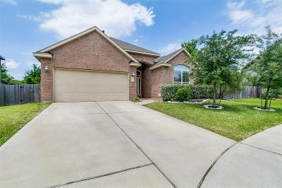 Tomball Single Family Home For Sale: 11002 Arthurian Dream Court