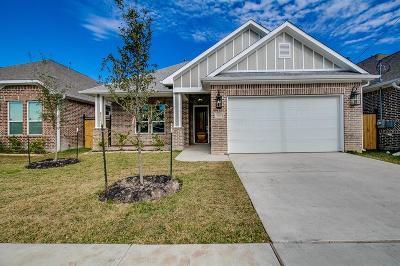 Houston Single Family Home For Sale: 6324 Milwee Street Street