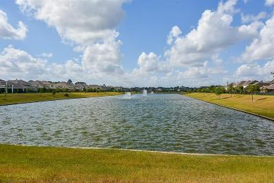 Tomball Single Family Home For Sale: 11623 Trail Point Drive