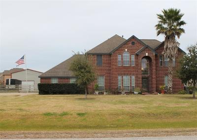 Baytown Single Family Home For Sale: 8803 Black Horse Road