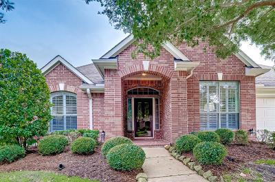 Katy Single Family Home For Sale: 7206 Spring Meadow Lane