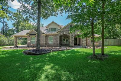 Conroe Single Family Home For Sale: 4 Timber Wood Lane