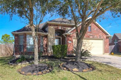 Pearland Single Family Home For Sale: 13201 Misty Shore Lane