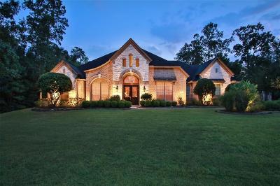 Conroe Single Family Home For Sale: 13101 Autumn Ash Drive