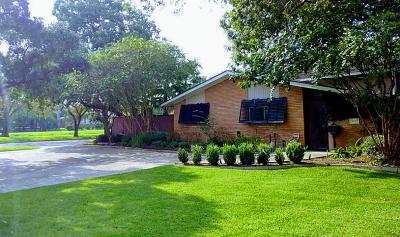 Meyerland Single Family Home For Sale: 5030 N Braeswood Boulevard