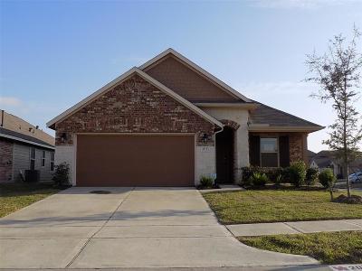 Katy Single Family Home For Sale: 20723 Black Birch Bend Drive