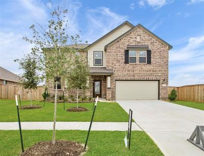 Texas City Single Family Home For Sale: 12704 Flora Manor Drive