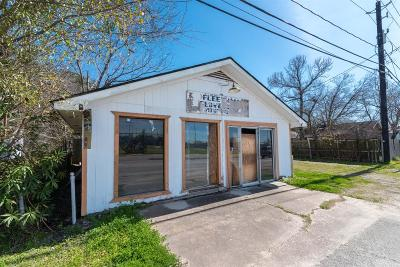 Houston Single Family Home For Sale: 1109 Mercury Drive