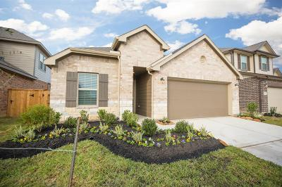 Katy Single Family Home For Sale: 24238 Gold Cheyenne Way