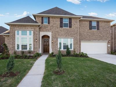 Sugar Land Single Family Home For Sale: 4106 Baywater Park Lane
