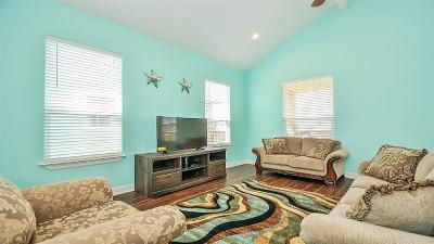 Surfside Beach Single Family Home For Sale: 339 Jettyview Road