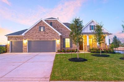 Tomball Single Family Home For Sale: 13602 Tangle Branch