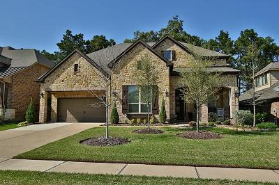 Tomball Single Family Home For Sale: 13422 Ambler Springs Drive