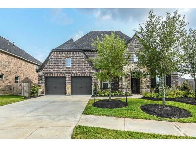 Katy Single Family Home For Sale: 29211 Rock Daisy Court