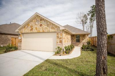 Porter Single Family Home For Sale: 4310 Chester Forest Court