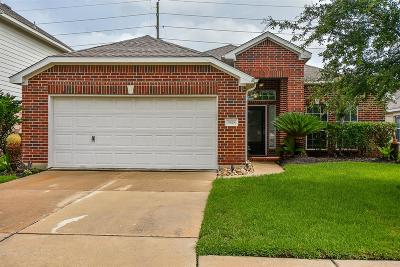 Tomball Single Family Home For Sale: 9618 Gold Rush Springs Drive