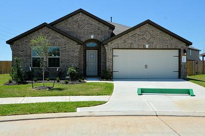 Rosenberg Single Family Home For Sale: 9119 Hemlock Street
