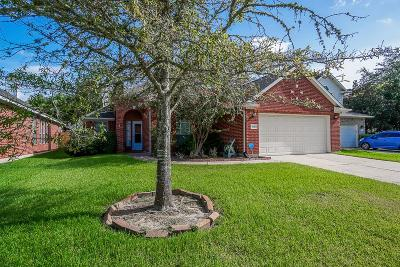 Sugar Land Single Family Home For Sale: 3110 Orchard Bend Drive